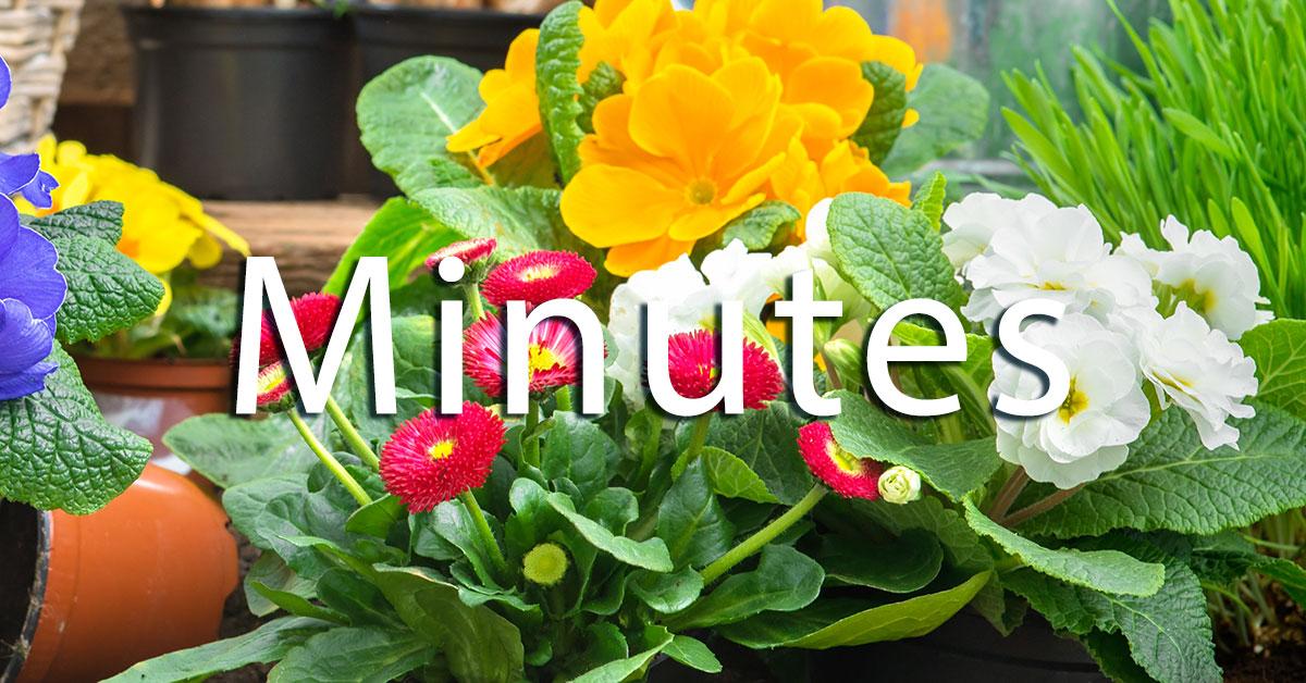 Commiittee Minutes | Old Metairie Garden Club