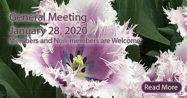 Old Metairie Garden Club General Meeting - 1/28/2020