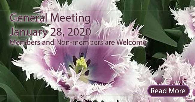 Old Metairie Garden Club General Meeting - 1/28/2020